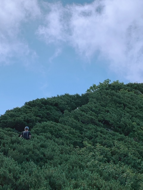 夏休み~その1八ヶ岳